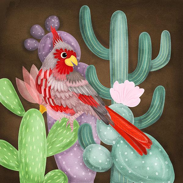 desert cardinal bird illustartion