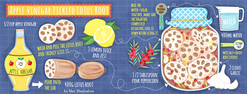 apple vinegar picked lotus root recipe illustration