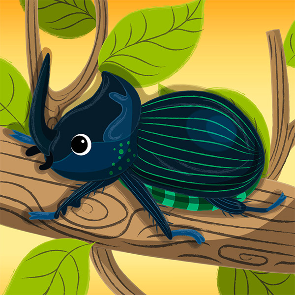 rhino the beetle illustration