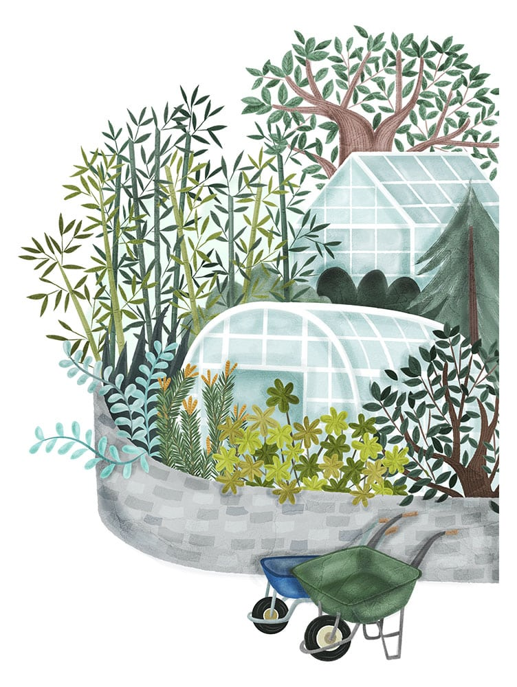 Edinburgh Zoo Garden Illustration
