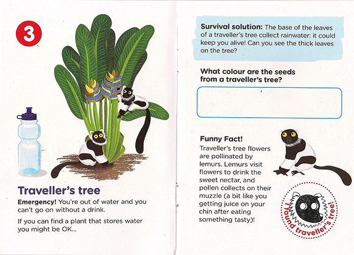 RBGE Children Survival Trail booklet illustration illustrated by Edinburgh based illustrator Liv Wan