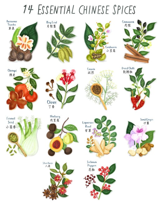 chinese spices poster