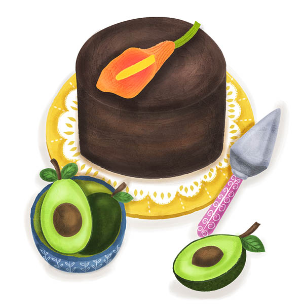 chocolate avocado cake food illustration