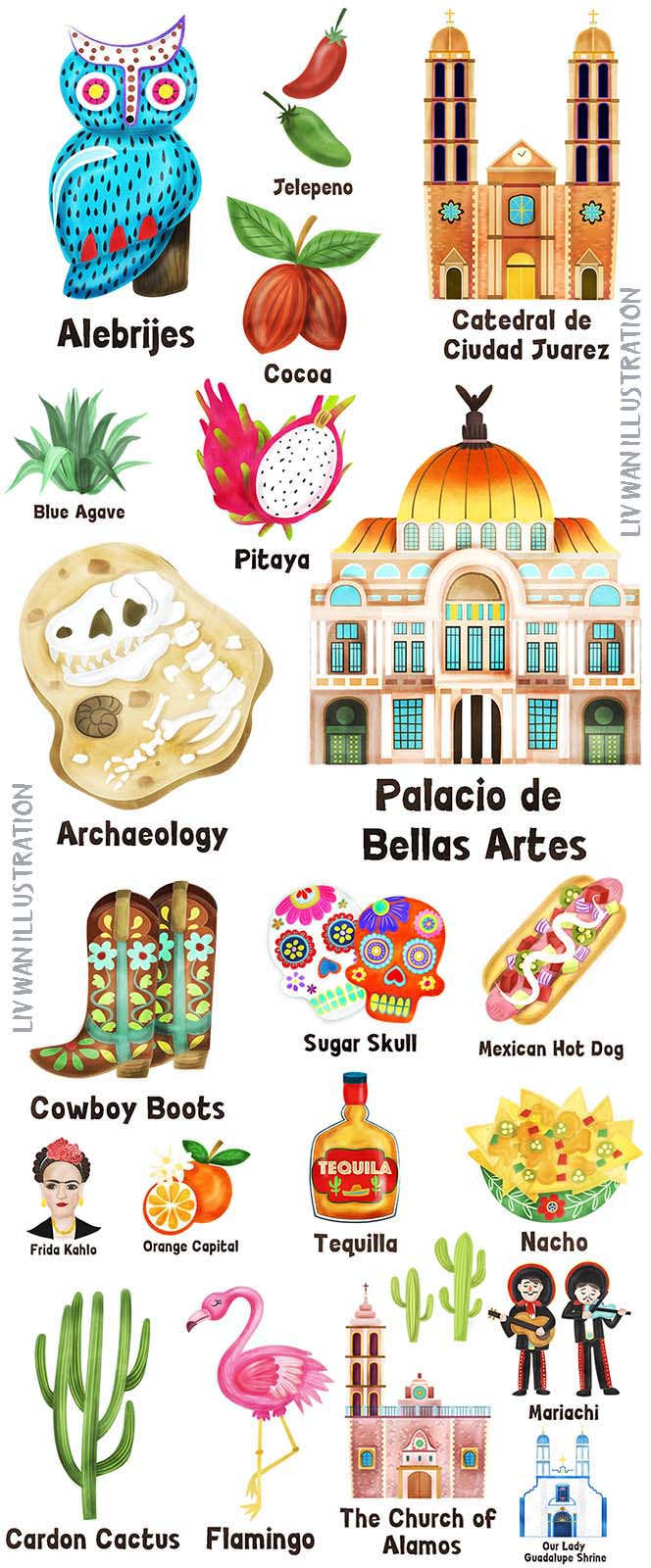 mexico map illustration elements