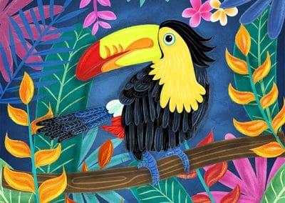 Beautiful Bird Illustrations