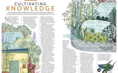 RZSS Edinburgh Zoo Lifelinks Magazine Illustration