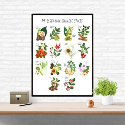 Chinese Spices Illustrations Poster Wall Art