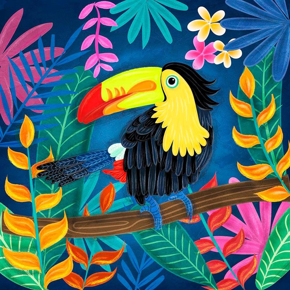Art Illustration: Toucan Bird Illustration 23x23cm Poster Wall Art Square