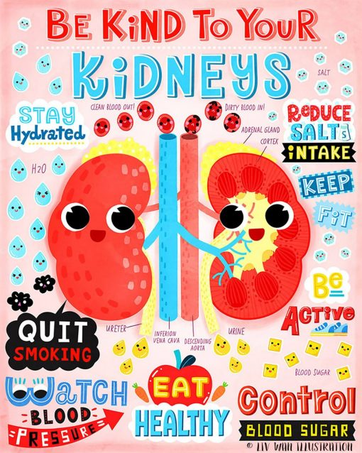 Be Kind to Your Kidney-Anatomy Poster, Mini Print, Postcard, Wall art