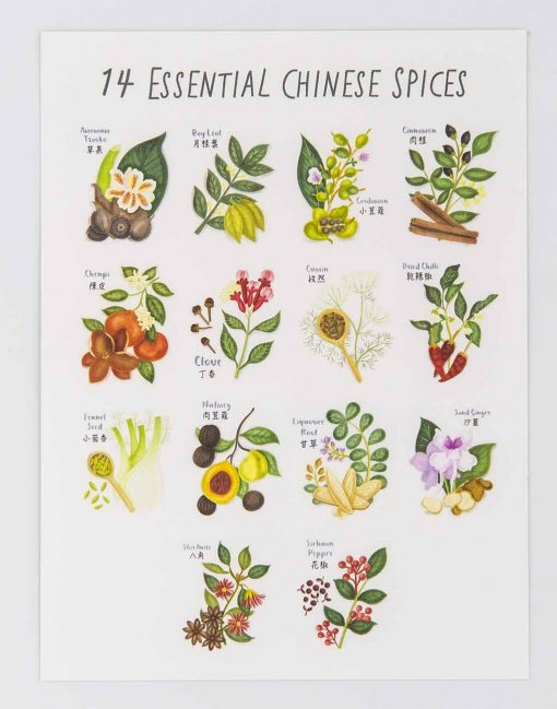 essential chinese spices postcard